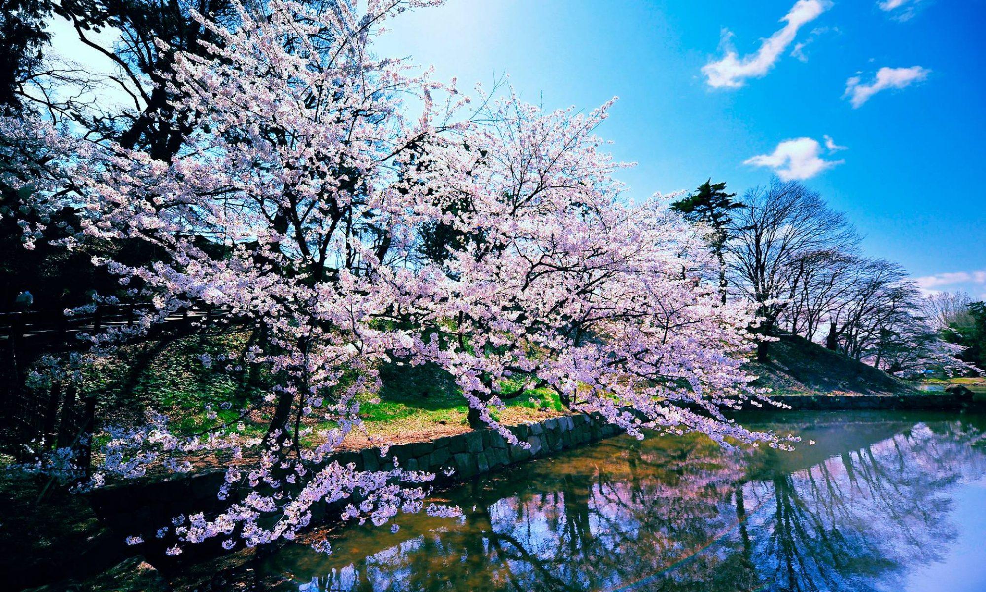 Unit Kebudayaan Jepang ITB - 日本文化部